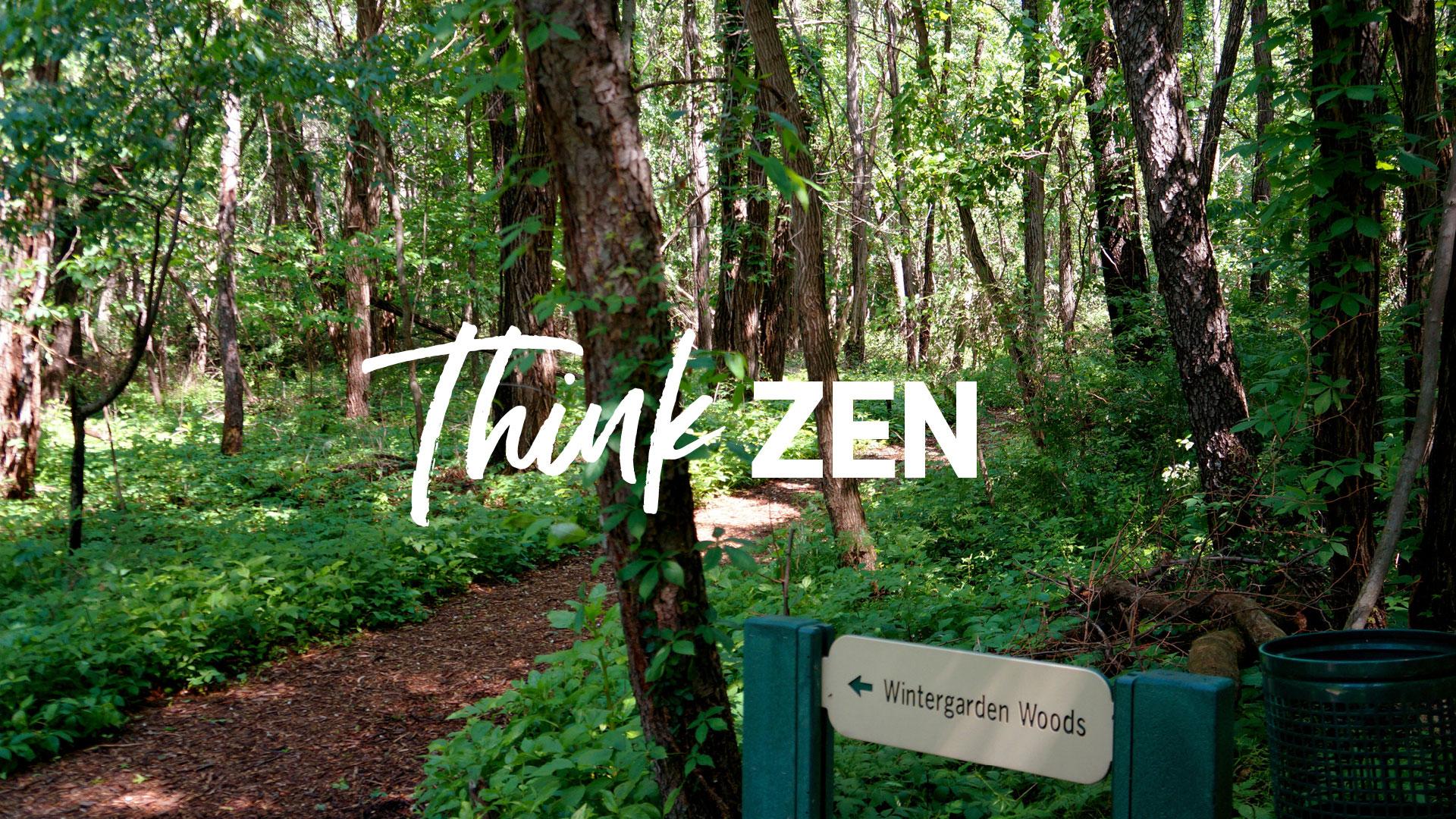 Think Zen